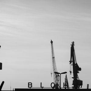 Die Kräne von Blohm + Voss im Freihafen in Hamburg
