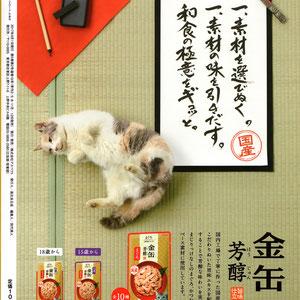 「金缶 芳醇」雑誌広告用キャッチコピー