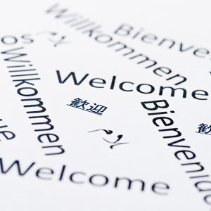 <h1>Sprachen