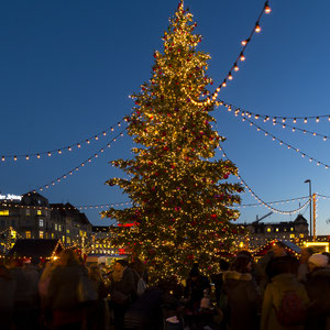 Christmas Tree and People