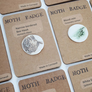Moth Report Badges Featuring 3 Cornwall's priority moth species and 3 species with a striking decline in the UK. Photo James Mann.