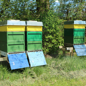 Bienenvölker Unterstand