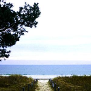 Strandzugang vor der Villa Sirene