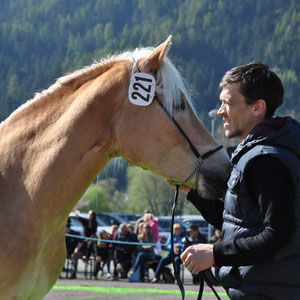 AMY  Besitzer: Achenrainer Christoph, Tösens
