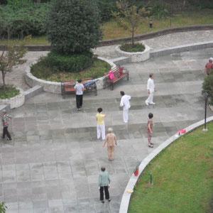 Morgens im Park vor meinem Fenster - ältere Männer und Frauen beim Tai Ji