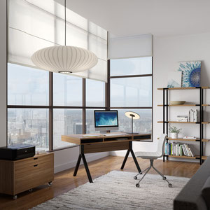 modern wood desk, shelving unit and storage cabinet
