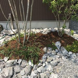 砂利敷きの駐車スペースに溶け込むように、割栗石で植栽スペースの区分けをしました。無機質な石に山野草、多肉植物が彩りをもたらしてくれるため、とてもやわらかい印象になります。
