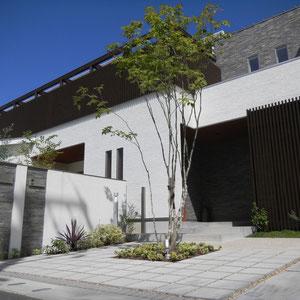 車が停まらない部分は前庭として、シンボルツリーを囲むようにコンクリート平板300mmを目地を広めにとりながら敷いています。目地には玄関土間と同じ素材の千鳥砂利を敷きました。門塀裏のスペースはプライベートガーデンになっています。  岡山市北区T様邸 エクステリア フラワーチルドレン