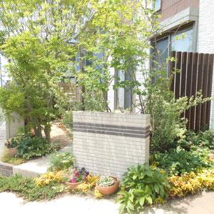 約10年前、他社さんが施工したお庭のリフォームです。既存門壁を高圧洗浄し、大きく道路へはみ出していたシマトネリコの大木を2本撤去、塗装壁に気根で張り付いていたツタもはがし、足元の低木も軽く剪定しました。                            岡山市中区 K様邸 フラワーチルドレン エクステリア