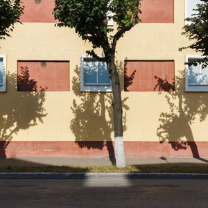 Второе место - фотография № 15 от Ирины (ironrations)