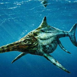 三陸東山道 世界最古の魚竜・UTATU ZAURUSU