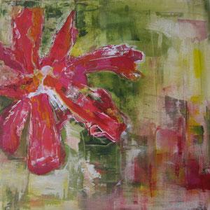 Rote Blume                  70-70           2010