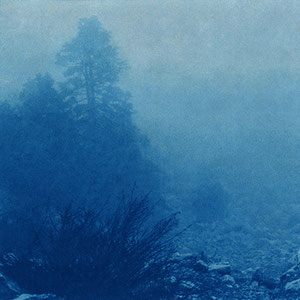 Nebelbusch, Hellas