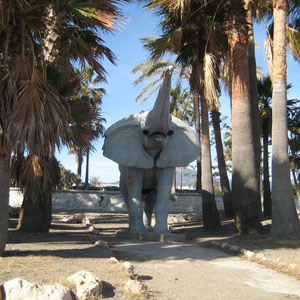 Een olifantendouche in San Pedro de Alcatara