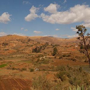 Madagaskar: Unterwegs auf dem Hochplateau (Zentralregion Madagaskars)