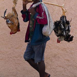 Mann mit Einkauf in Madagaskar ... alles ganz frisch!