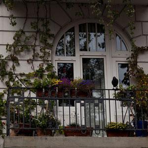 Hamburg - Blumengschmückter Balkon