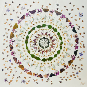 Brautstrauss trocknen - Wildblumen 50 x 50
