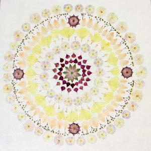 Brautstrauss konservieren, Mandala 60 x 60 mit Astrantien