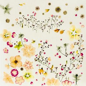 Brautstrauss trocknen, Alternative   Kunstwerk aus gepressten Blüten creative stye 60 x 60