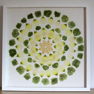 Brautstrauss trocknen Hortensien, Lysanthium konservieren 40 x 40