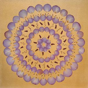 Brautstrausss trocknen - Rose ocean blue
