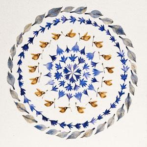 Blüten pressen - Kornblumen 40 x 40