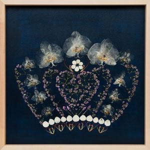 Krone mit gepressten Orchideen 50 x 50