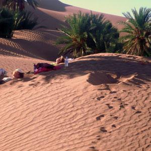 Arenotrapia en las dunas de Tagounite