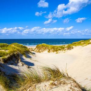 Sondervig Strand (Bild von Günter Rohe auf Pixabay)