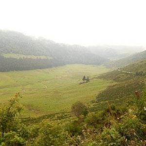 Paysage embrumé d'Auvergne