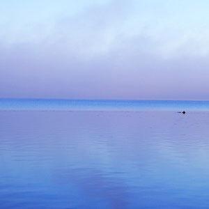... für erholsame Erlebnisse am und auf dem See ..