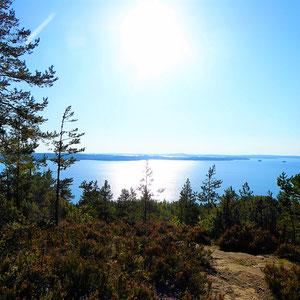 Von den Höhen des kleinen Berges auf der Insel Päijätsalo, direkt fußläufig von Ihrem Mökki erreichbar genießen Sie das Panorama des großen Archipels ...