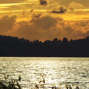 Schöne Abendpanorama in den Schilfzonen am See.