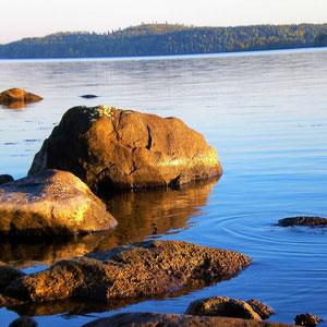 Entdecken Sie Details der Umgebung im besonderen skandinavischem Licht.