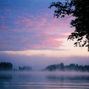 """Im Spätsommer und Herbst """"tanzen die Wasserelfen""""  auf dem ruhigen See."""