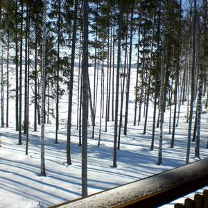Mit einem Glühwein in der Hand und in Decken eingemummelt schauen Sie im Winter auf das polare Panorama am See.
