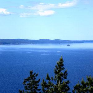 360 Grad Panoramablick auf den See von dem nahen Aussichtsturm, fußläufig direkt vom Haus erreichbar.