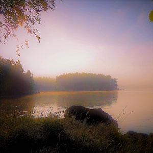 Das Schönste im Leben ist das Geheimnisvolle ...