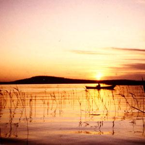 """Angeln Sie beim Sonnenaufgang in den Schilfzonen der Bucht vor Ihrem Haus. Im Hintergrund der """"Berg"""" mit dem Aussichtsturm, 1,5 km fußläufig von Ihrem Domizil erreichbar."""