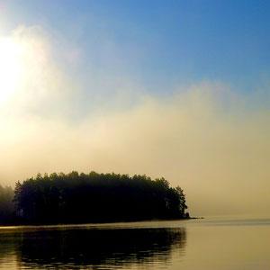 ... bei uns z.B. im Herbst am Ufer vor dem Haus und bei Wanderungen in der Umgebung erlebbar.