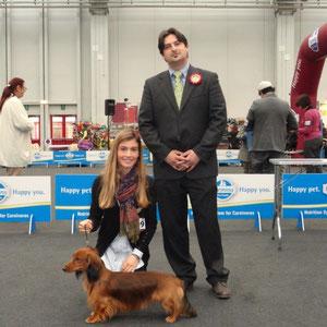 Esposizione Nazionale di Parma 17.03.2013 BOB Bassotto Standard Pelo Lung