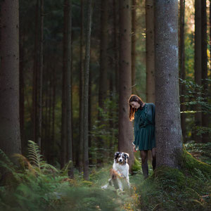Hundeshooting im Wald