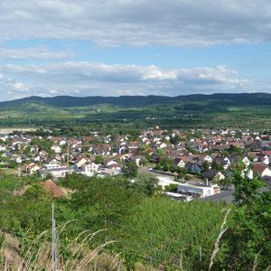 Blick vom Lützelberg auf Sasbach/Leiselheim/Königschaffhausen
