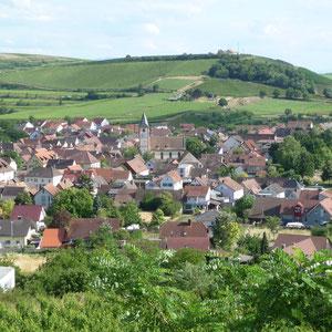 Blick vom Lützelberg auf Sasbach