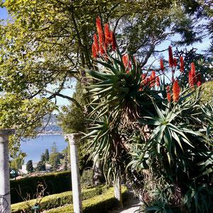 Frankreich, Park Villa Rothschild