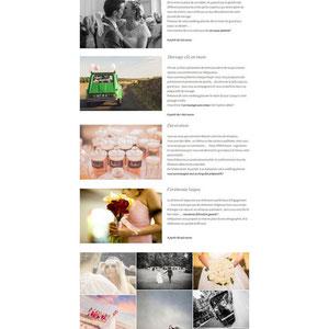 Le site en ligne