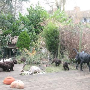 Hope is een grote, lieve labrador en ze vinden hem wel indrukwekkend!