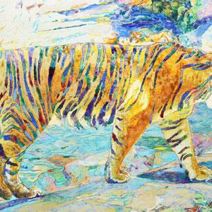 《虎》  27.3×41.0cm 2015