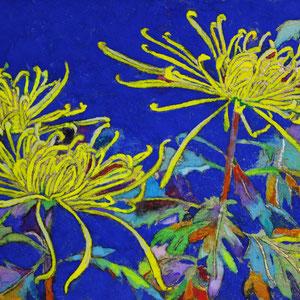 《糸菊》 10.0×14.8cm 2015